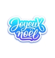 Joyeux Noel text on label Christmas greeting card vector image vector image