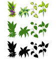 set of plant design vector image vector image
