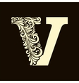 Elegant capital letter V in the style Baroque vector image