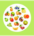 fruit set background with fruits in circle on vector image vector image