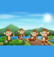group monkey enjoying nature on road vector image vector image