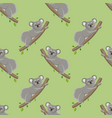 koala pattern on a branch with leaves vector image