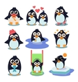 penguin set with penguins vector image vector image