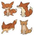 set fox vector image