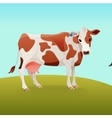Brown and white spotted cow vector image