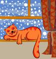 cute cat sleeping vector image vector image