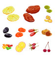 design of fruit and dried logo set of vector image