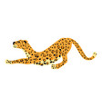 leopard smack cute trend style animal predator vector image vector image