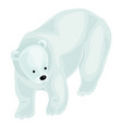 white bear icon cartoon style vector image vector image