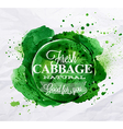 Cabbage watercolor Poster vector image vector image