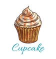 Chocolate cupcake with cream and caramel sketch vector image vector image
