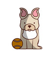 cute dog mascot with tennis ball vector image vector image