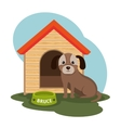 dog pet shop icon vector image