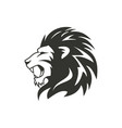 heraldic lion logo design isolated on white vector image vector image
