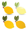 lemon set vector image vector image