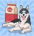 pop art husky dog with big food pack vector image