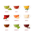 type tea beverage drinking natural products vector image vector image