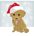 Cute labrador puppy in a Santa Claus hat vector image vector image