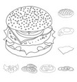 isolated object of burger and sandwich sign vector image vector image