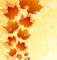 Autumn floral background with maple leaves vector image