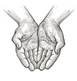 cupped hands folded arms sketch vintage vector image vector image