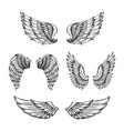hand drawn wing sketch angel wings with feathers vector image vector image