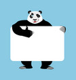 panda holding banner blank chinese bear and white vector image vector image