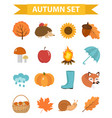 autumn icons set flat or cartoon stylecollection vector image vector image
