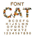 cat font catlike abc letters of cats pet alphabet vector image vector image
