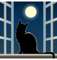 cat on a window sill vector image