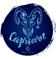 round zodiac sign capricorn vector image vector image