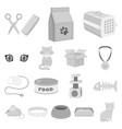 an animal cat monochrome icons in set collection vector image vector image