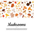cartoon mushrooms background vector image vector image