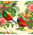seamless texture tropical hibiscus and vector image vector image
