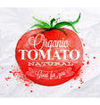 Tomato watercolor Poster vector image vector image