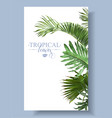 tropical leaf border vector image