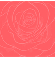 background with red rose close-up vector image vector image
