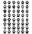 black print paws dogs and cats vector image vector image