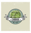 cabbage vintage set of labels emblems or logo for vector image vector image