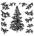 Christmas tree and branches silhouettes vector image