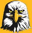 Eagle Head Front View Cartoon vector image vector image