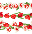 seamless borders with red and white tulips vector image vector image