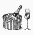 sparkling wine champagne or bubbly or fizz vector image