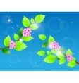 Cherry blossom against blue sky vector image