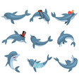 cute dolphins set cartoon sea animal characters vector image