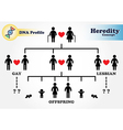 Hereditary diagram DNA profile vector image
