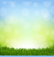 nature background with grass border vector image vector image