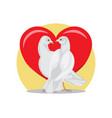 doves look at each other with passion at red heart vector image vector image