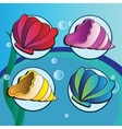 sea shells - Set of four elements vector image