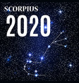 symbol scorpius zodiac sign with new year vector image vector image